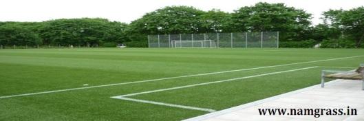 Multi Sport Grass